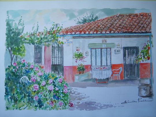 Rincón precioso.Fuentes 2011.