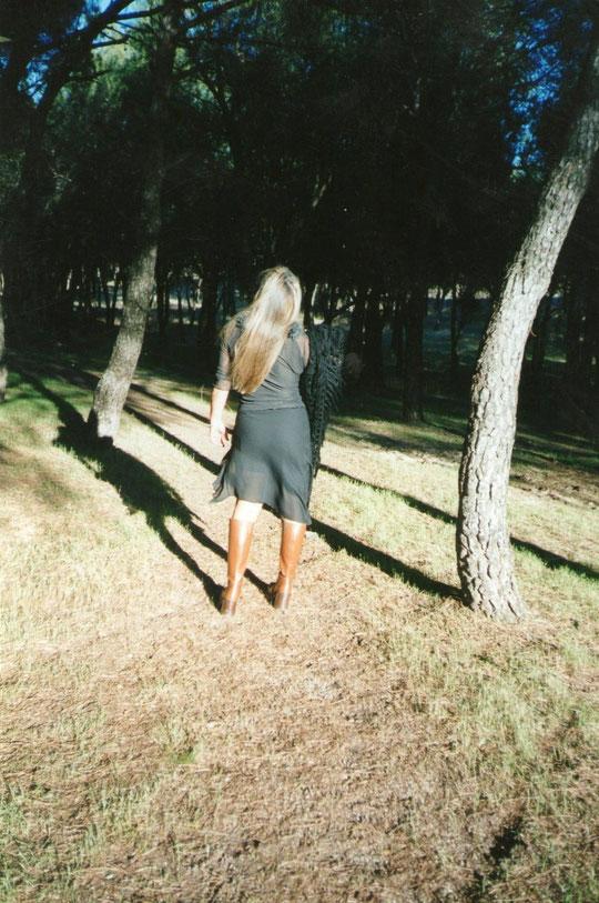 Entre los pinos. F. Pedro.