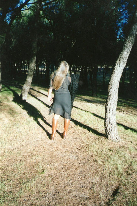Entre los pinos. F. Pedro. P. Privada.