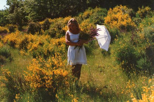 En las mañanitas del mes de Mayo, cantan los ruiseñores retumba el campo.