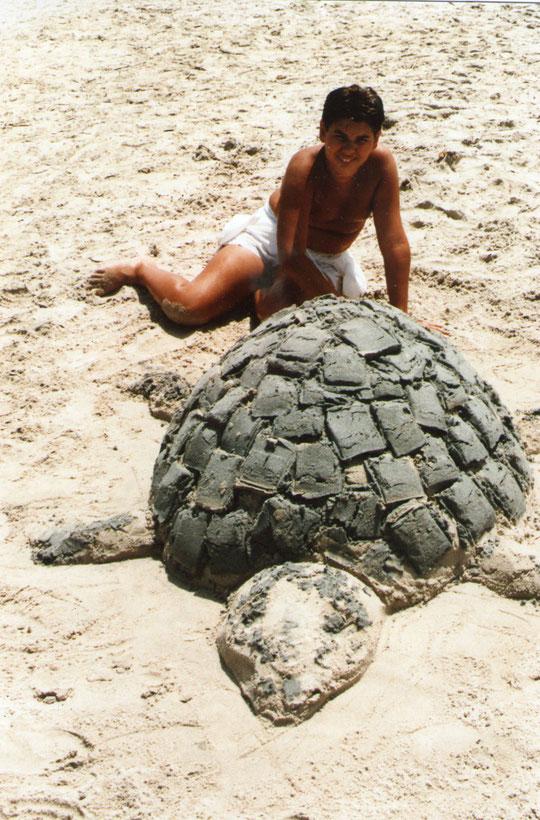 La tortuga. F. Merche.
