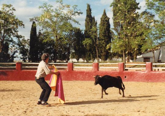 Aquí esta......Pedro recibiendo a la vaquilla.