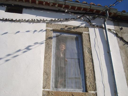 Volverán.......las oscuras golondrinas.....de los balcones..........sus nidos a colgar.........( BECQUER ) F. Merche. P. Privada.