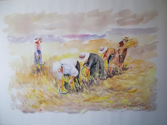 """"""" Siega en Castilla """" ( Acuarela )"""