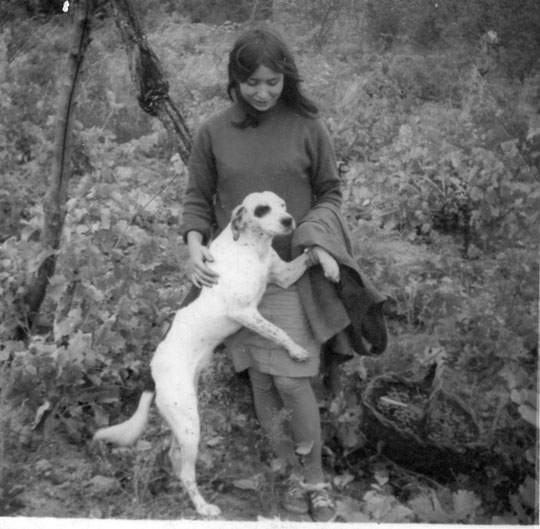 En la viña con la Cherri. Año 1966.
