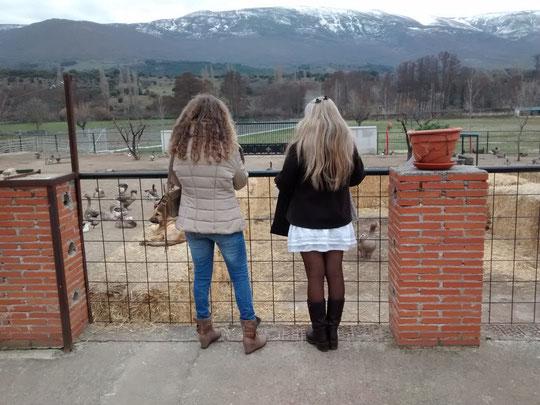 Mirando las cumbres de Gredos.