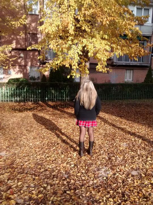 Un manto de hojas.