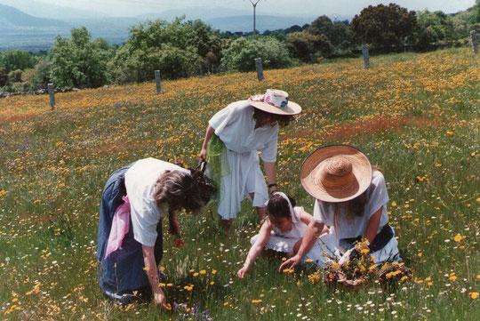 Montse, Belén, Cristina y Merche.
