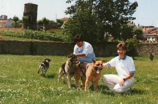 Con los perros.