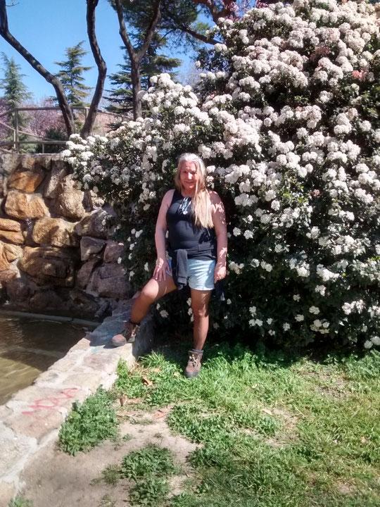 Arbustos en flor. F. Pedro. P. Privada.