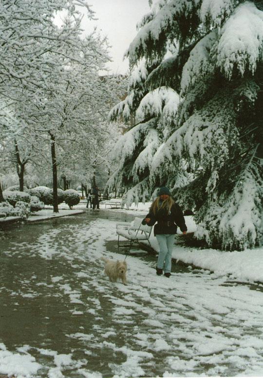 Paseo invernal con perrito. F. Pedro. P. Privada.