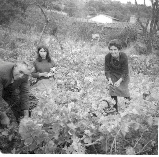 Papás y Merche. Año 1966.