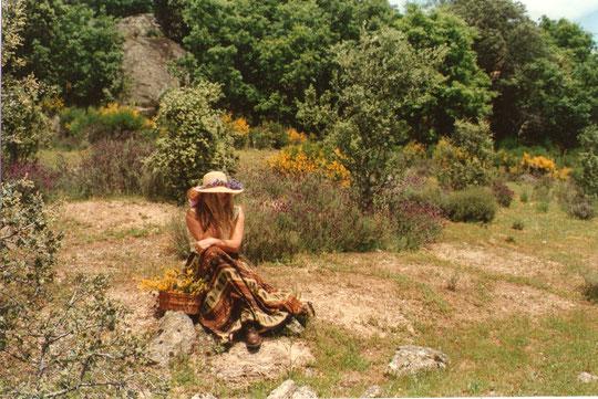Y............ ¡¡ A disfrutar de la naturaleza !! F. Pedro.