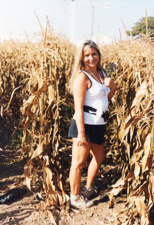Entre el maíz seco.