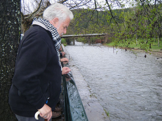 Bonita imagen del rio. F. Merche.