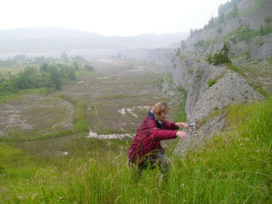 Alpine Kulisse im Steinbruch