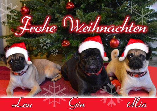die Turmbergmöpse wünschen frohe Weihnachten und ein guter Rutsch ins neue Jahr