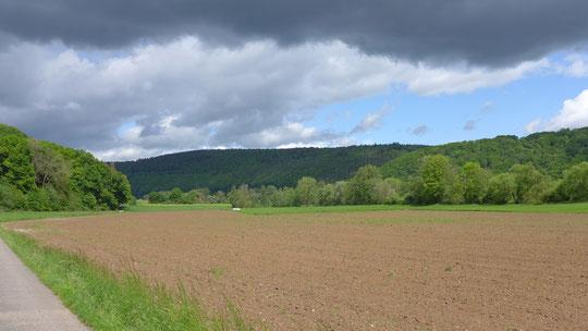 Das Foto des Tages: blauer Himmel, schwarze Wolken - der nächste Regen kommt bestimmt, der nächste Sonnenschein auch ...