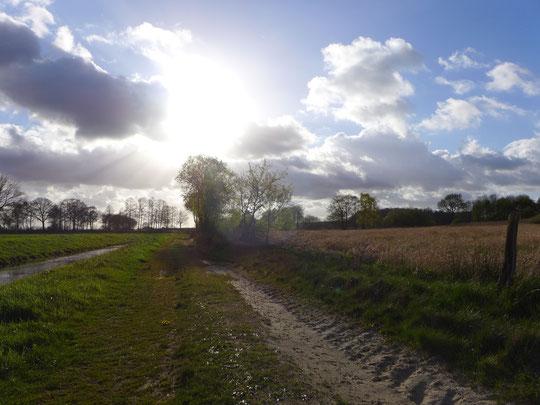 Mein Lieblingswetter: Wolken-Sonnemix