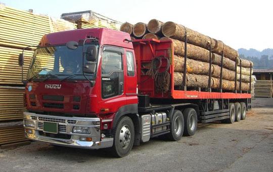いすゞ ギガ6×4重トラクタ+原木トレーラー