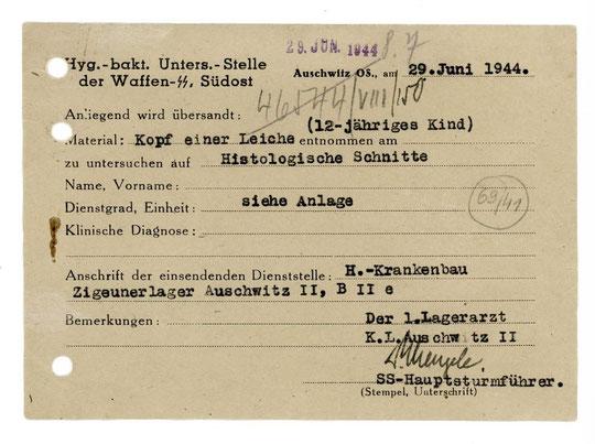 """Lagerarzt Dr. Josef Mengele übersendet den Kopf eines 12jährigen Kindes aus dem """"Zigeunerlager"""" Auschwitz 2, Sammlung des Archivs des Staatsmuseums Auschwitz-Birkenau, Oświęcim, alle Rechte vorbeh.!"""