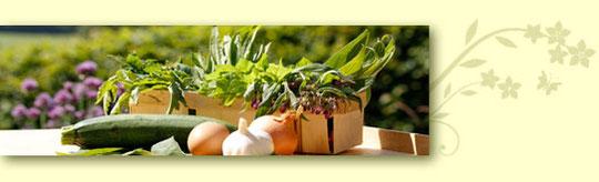 Zutaten für Wildkräuterrezepte