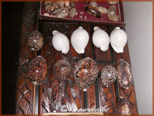 Des Ovulaovums blanches avec des porcelaines