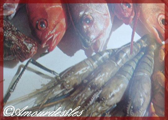 Série de plusieurs races de poissons pour ce plat ci dessus...