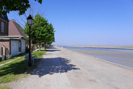 CKMV Baie des Phoques