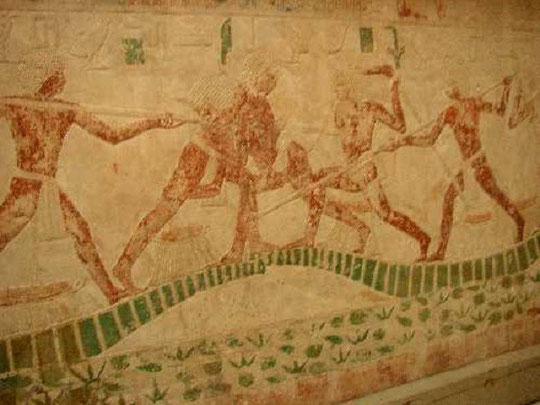 joutes en Egypte