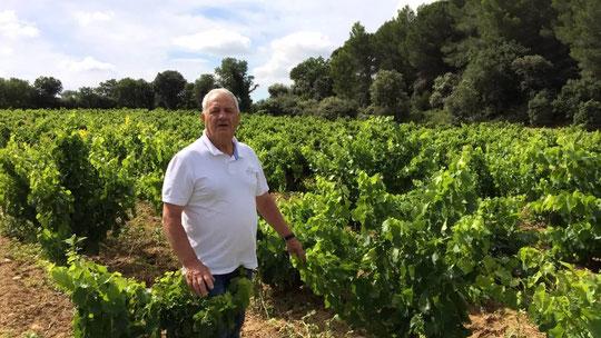 Paul Feraud dans ses vignes
