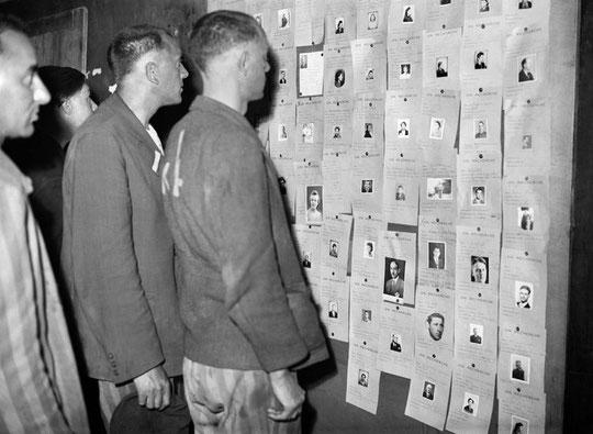 Au Lutétia en 1945, consultation des avis de recherches (photo Libération.fr)