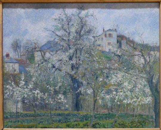 Camille Pissarro : printemps, pruniers en fleurs, 1877
