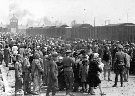 la sélection à l'arrivée des convois à Auschwitz
