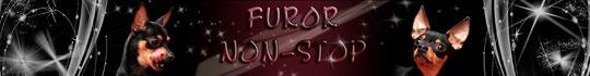 FUROR NON-STOP  ����� ���-����