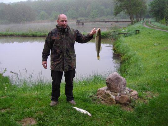 Mark Hoffmeister am 19.05.2013  / Zuchtteich 3. Zander ca. 63 cm/4 Pfund.