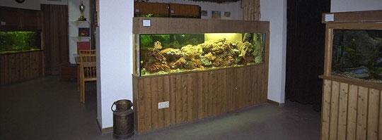 Das Meerwasseraquarium am Eingang zum Börsenraum