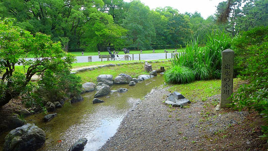 京都御苑の中にある出水の小川は自然が豊富で幼児でも安全に水あそびができます。