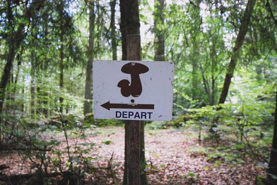 Randonnées sentiers de découverte en Xaintrie
