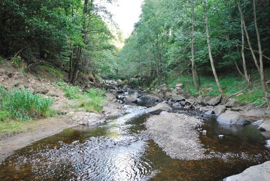 La Rivière l'Eau verte avant le barrage