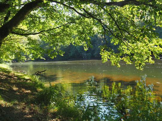La randonnée en canoë d'Argentat à Beaulieu