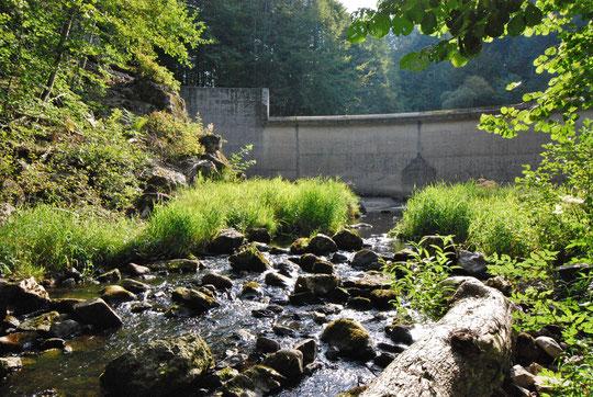 La rivière aprés le barrage