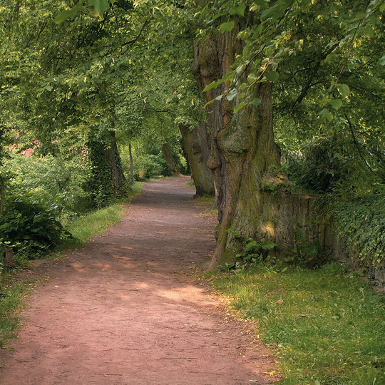 aus: Soest - Lyrische Spaziergänge
