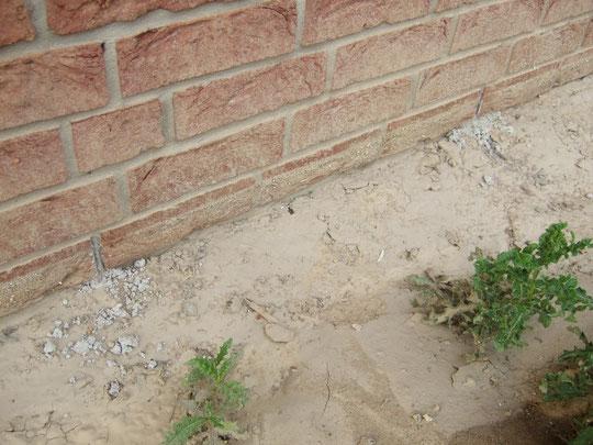 Verschlossene Entwässerungsfugen im Klinker