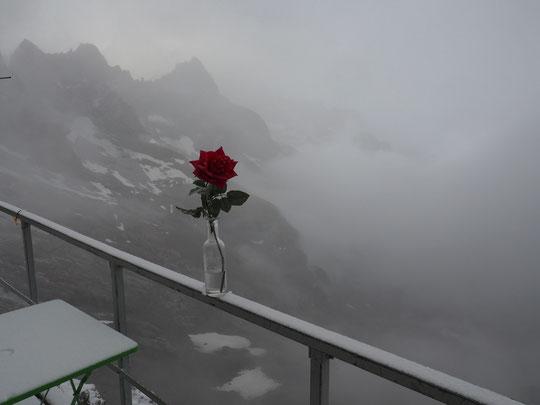 Un petit air automnal ce matin en haute altitude, avec un petit centimètre de neige , du brouillard et un peu de fraîcheur (moins 1,3°). Merci à Eric, alpiniste Belge, qui nous a monté ce petit cadeau... dépaysant !