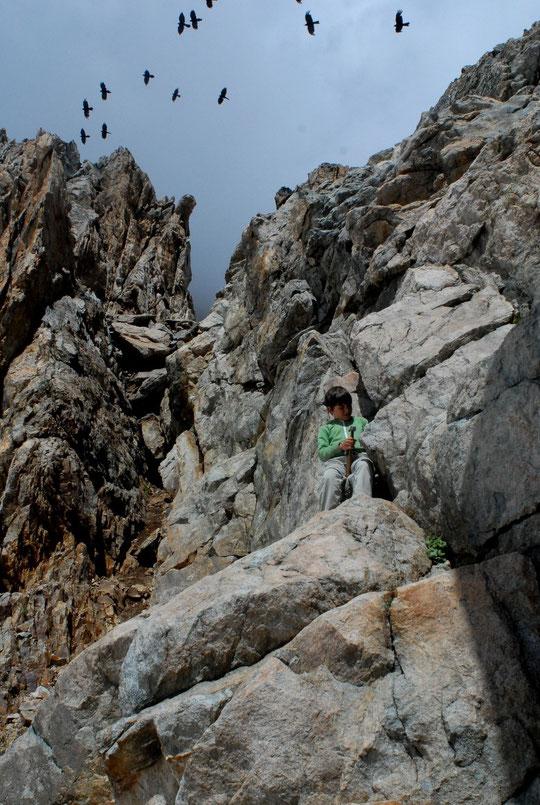 Les tailleurs de pierre sont de retours. Yoska (notre fils de 9 ans) s'entraine presque tous les jours !