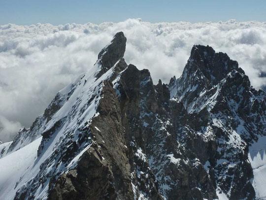 """""""Les magnifiques Arêtes de la Meije"""" (Photo prise le 1er Août depuis le sommet du grand Pic, par Jacks de la cordée Lescat)."""