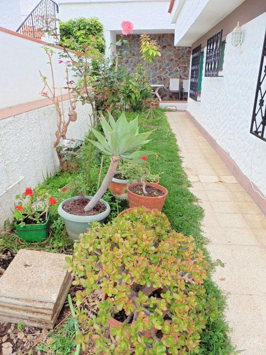 Kleiner Gartenanteil