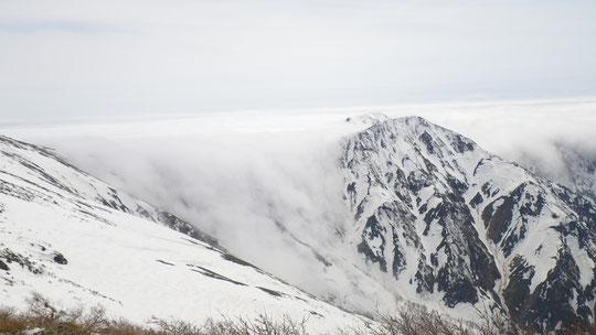 谷川岳~オジカ沢の頭から流下する雲海