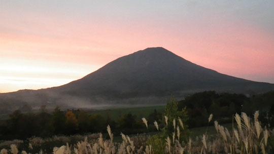 真狩温泉から 夕日の照り返しに彩られた羊蹄山